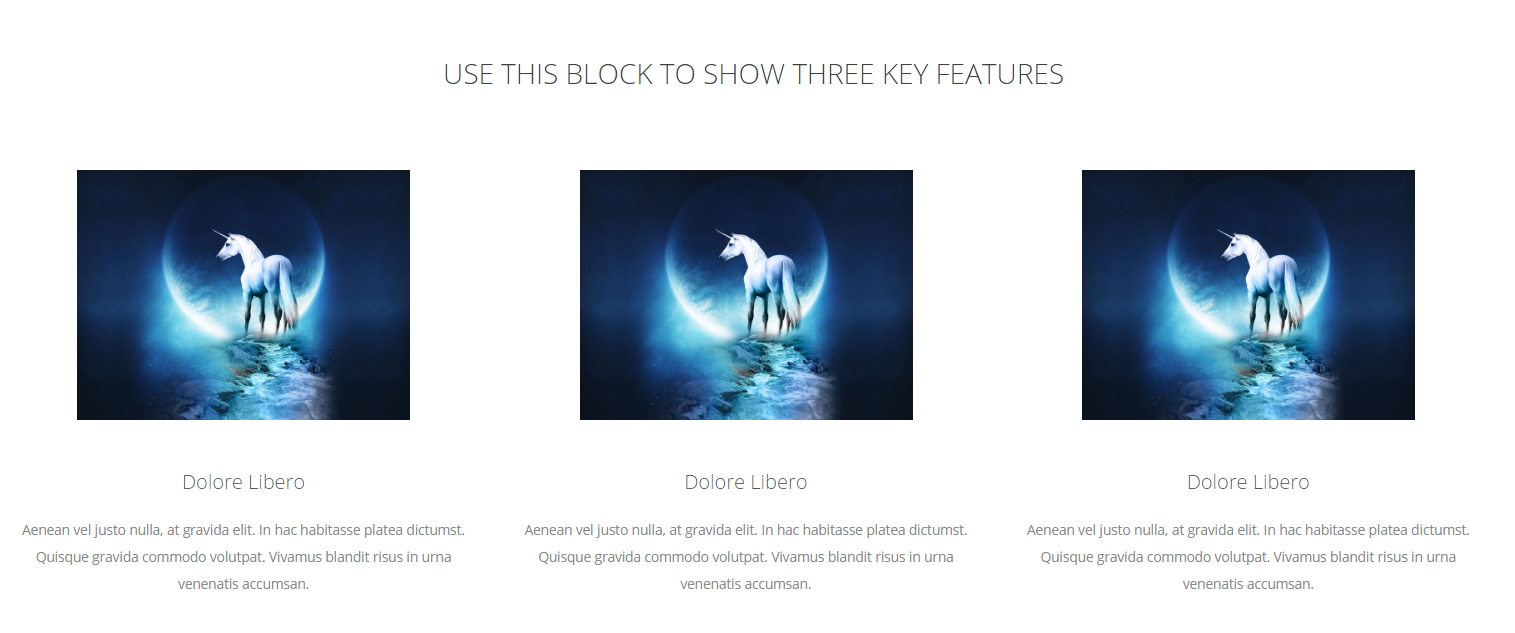 3 feature block with Linked Image, H3 Text and a short paragraph/Excerpt