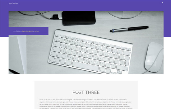 Portfolioo WordPress theme less clutter