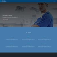 medical Demo Link