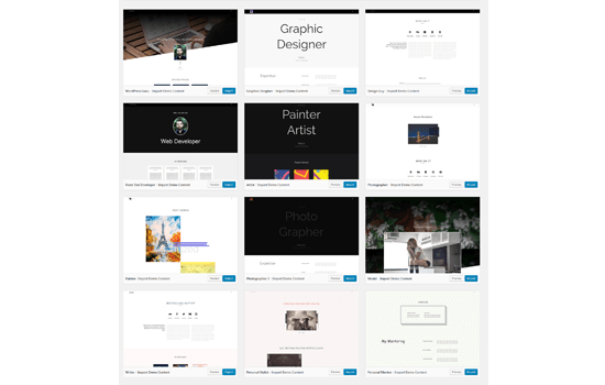 Portfolioo Pro one click demo template import