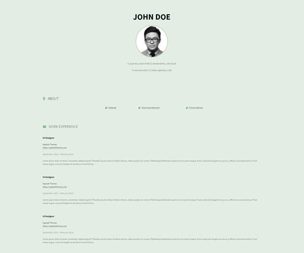 WordPress Theme Resumee Screenshot