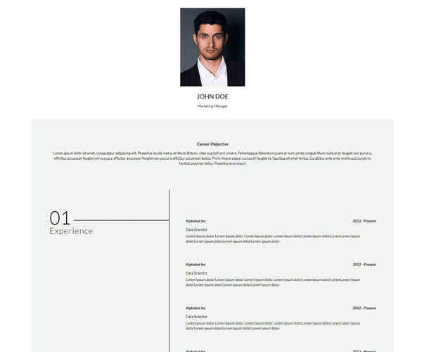 WordPress Theme CurriculumVitae Screenshot