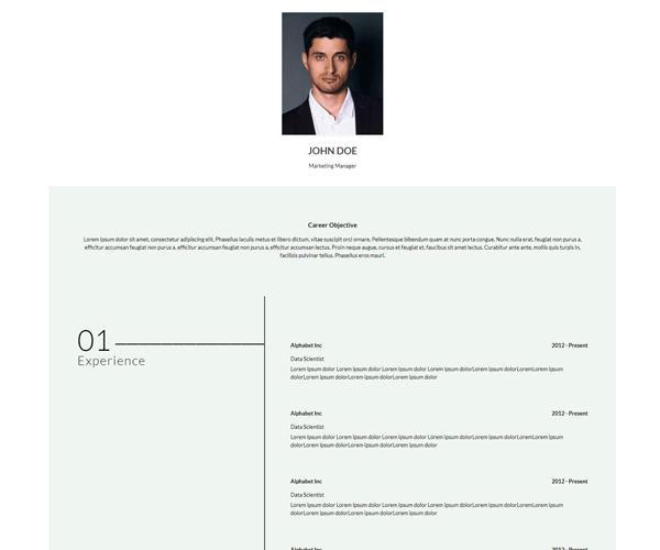 WordPress Theme CurriculumVitae Screenshot