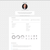 A Clean Lightweight And Bloat Free Wordpress Resume Theme For Online
